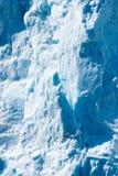 alascy lodowowie Obrazy Stock