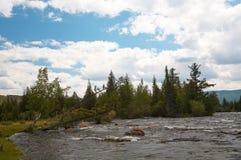 alash rzeki Zdjęcie Royalty Free