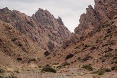 Alashan-Hochebene Halbwüsten- Südwestlich des Ost-Gobi-deser stockbilder