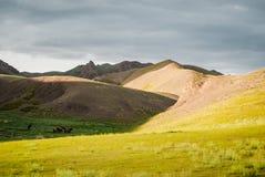 Alashan-Hochebene Halbwüsten- Südwestlich des Ost-Gobi-deser stockfotografie