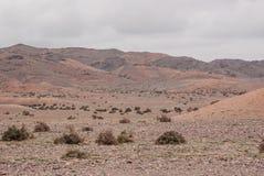 Alashan-Hochebene Halbwüsten- Südwestlich des Ost-Gobi-deser lizenzfreies stockbild