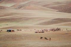 Alashan-Hochebene Halbwüsten- Südwestlich des Ost-Gobi-deser lizenzfreie stockfotografie