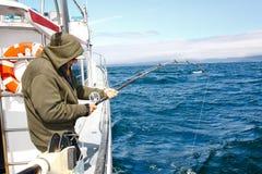 Alaska - älterer Mann-Fischen, das im Heilbutt wirbelt lizenzfreie stockfotos