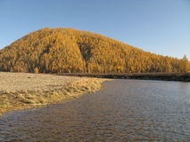 Alaska. (Autumn in wild nature Royalty Free Stock Images