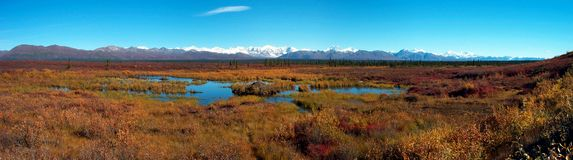 Alaska. A panoramic shot of the Denali Range in Alaska Stock Image