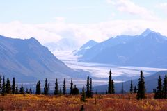 Alaska. View of Alaskan mountains and meadow royalty free stock photos