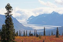 Alaska. View of Alaskan mountains and meadow royalty free stock images