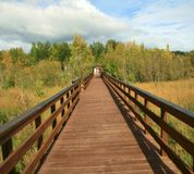 Alaska. Boardwalk through a park royalty free stock photos