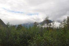 Alaska 2014 Royaltyfri Foto