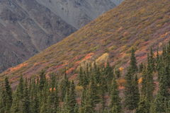 Alaska Imagenes de archivo