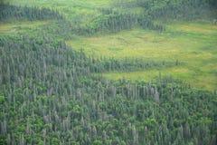 Alaska aerial view Stock Photos