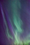 Alaska Aurora. Display of Northern lights in south central Alaska from April 2014 Stock Images