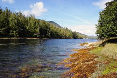 ALASKA BEAUTY. BEUTIFUL LANDSCAPE FROM ALASKA LAKES AND RIVERS Royalty Free Stock Photo