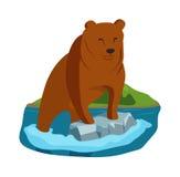 Alaska björnillustration Stock Illustrationer