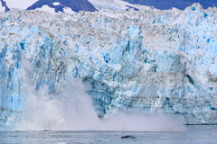 Alaska Calving Glacier Royalty Free Stock Photography