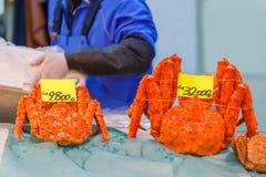 Alaska Crab at Tsukiji Fish Market Stock Photo