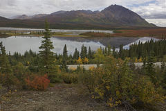 Alaska Denali highway in autumn Royalty Free Stock Photography