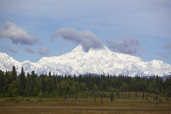 Alaska Denali mountain Royalty Free Stock Images