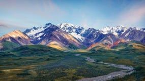 Alaska Denali nationalpark arkivfoton