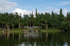 alaska denali park narodowy Zdjęcia Royalty Free