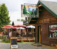 Alaska Denali Zipline bereist Talkeetna Lizenzfreie Stockfotografie