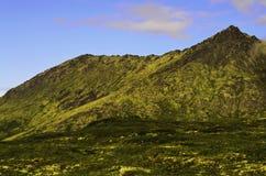 Alaska experience Royalty Free Stock Photo