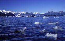 alaska fjord Royaltyfri Fotografi