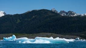 Alaska góry lodowa Fotografia Royalty Free