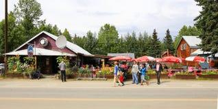 Alaska-Gebirgshohe Pizza-Torte Talkeetna Lizenzfreie Stockfotos