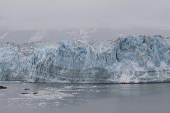 alaska glaciärhubbard arkivbilder