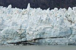 Alaska glaciärnationalpark Arkivbild