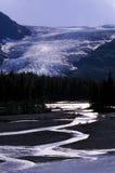 alaska glaciärström Royaltyfri Bild