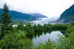 alaska glaciär juneau Arkivfoto