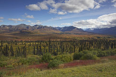 Alaska Glenn highway in autumn Royalty Free Stock Photos