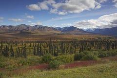 Alaska Glenn highway in autumn. September Royalty Free Stock Photos