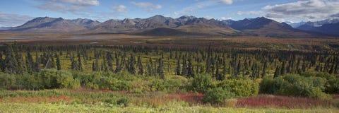 Alaska Glenn highway in autumn. September Royalty Free Stock Image