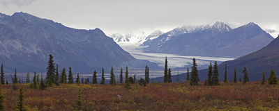 Alaska Glennhighway in autumn Stock Images