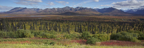 Alaska Glennhighway en otoño fotografía de archivo