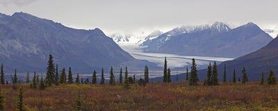 Alaska Glennhighway en otoño imagenes de archivo