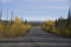Alaska Highway Canada Gravel Road Stock Image