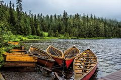 Canoe on Lake, Alaska. Alaska is home to the two largest national forests in the United States. The Tongass National Forest in Southeast Alaska is the largest stock photos