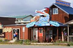 Alaska - Homer Bear Photo Safari royalty free stock photos