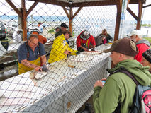 Alaska- - Homer-Heilbutt-Fisch-Reinigungs-Station Stockfotos