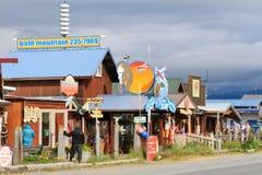 Alaska - Homer spottar shoppar och turnerar royaltyfri bild