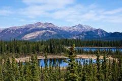 Alaska interior fotografía de archivo libre de regalías