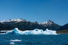 alaska isberg Arkivfoto