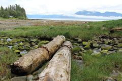Alaska Island Beach Landscape Royalty Free Stock Photography