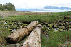 Alaska Island Beach Landscape Royalty Free Stock Photography