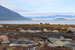 Alaska Island Coast with Fog Royalty Free Stock Photography