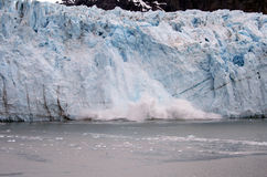 alaska kalva glaciär Arkivfoto